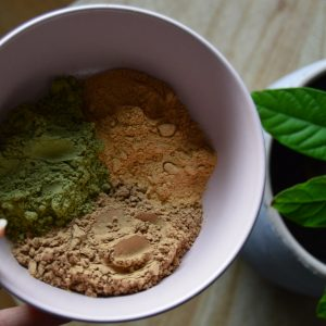 soin capillaire végétal